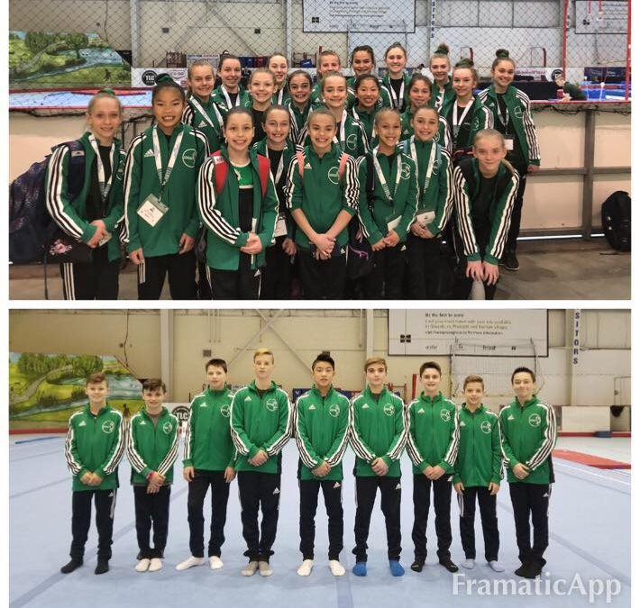 2018 Western Canadian Artistic Gymnastics Championship Results